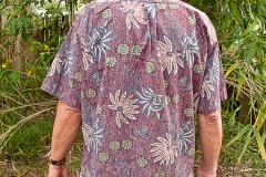 reyn-spooner-shirt